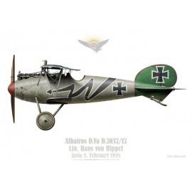 Albatros D.Va, Ltn. Hans von Hippel, Jasta 5, février 1918