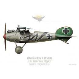 Albatros D.Va, Ltn. Hans von Hippel, Jasta 5, February 1918