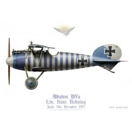 Albatros D.Va, Ltn. Hans Bohning, jasta 76b, December 1917