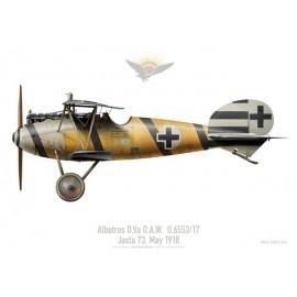 Albatros D.Va O.A.W. D.6553/17, Jasta 73, mai 1918