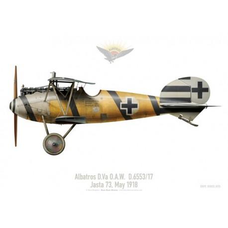 Albatros D.Va O.A.W. D.6553/17, Jasta 73, May 1918