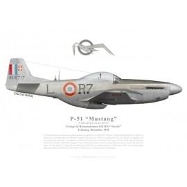 "F-6D Mustang, GR II/33 ""Savoie"", Fribourg, 1945"