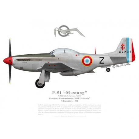 """P-51D Mustang, GR II/33 """"Savoie"""", French air force, 1952"""