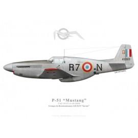 """F-6C Mustang, GR II/33 """"Savoie"""""""