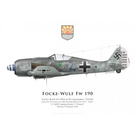 Focke-Wulf Fw 190A-8, Oblt. Rudi Linz, 12./JG 5, février 1945