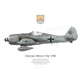 Fw 190A-8, Uffz. Gerhard Eisermann, 9./JG 5, février 1945