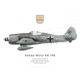Focke-Wulf Fw 190A-8, Uffz. Gerhard Eisermann, 9./JG 5, February 1945