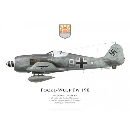 Focke-Wulf Fw 190A-8, Uffz. Gerhard Eisermann, 9./JG 5, février 1945