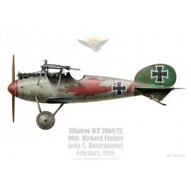 Albatros D.V, Oblt. Richard Flasher, CO Jasta 5, Boistrancourt, February 1918
