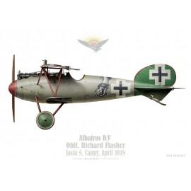 Albatros D.V, Oblt. Richard Flasher, commandant de la Jasta 5, Cappy, avril 1918