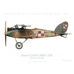 Halberstadt CL.IIA (BFW), Poznań Flight School, Poland, 1920