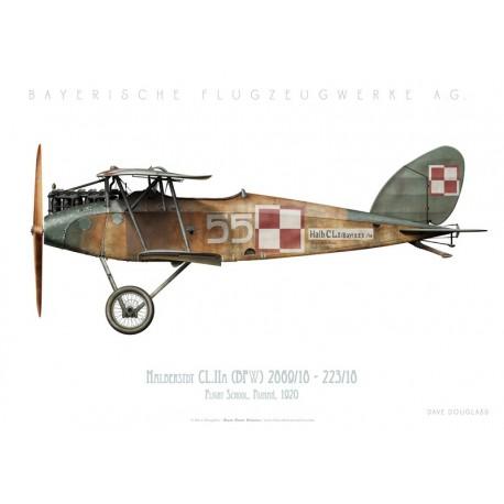 Halberstadt CL.IIA (BFW), Poznań Flight School, Poland, 1920