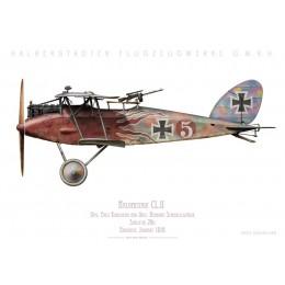 Halberstadt CL.II, Uffz. Kuhlmann & Oblt. Schmalschläger, Schlasta 26b, 1918