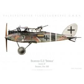"""Halberstadt CL.II """"Brünhilde"""", Schlasta 27, Boucheneuil, France, avril 1918"""