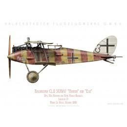 "Halberstadt CL.II ""Martha/Else"", Uffz. Niemann & Vzfw. Kolodzicj, Schlasta 21, France, octobre 1918"