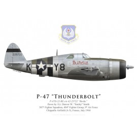 "P-47D Thunderbolt ""Birdie"", 1Lt Denver Smith, 507th FS, 404th FG, France, juillet 1944"