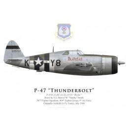 "P-47D Thunderbolt ""Birdie"", 1Lt Denver Smith, 507th FS, 404th FG, France, July 1944"