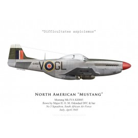 Mustang Mk IVA, Maj. H. O. M. Odendaal DFC & bar, No 5 Squadron SAAF, Italy, 1945