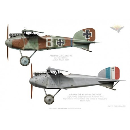 Albatros D.II, Ltn Max Bohme, before and after capture
