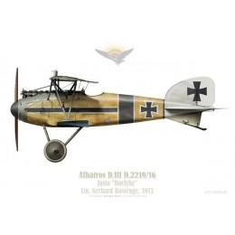 "Albatros D.II, Jasta ""Boelcke"", Ltn. Gerhard Bassenge, 1917"