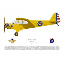 "Piper Cub F-GHLQ ""Spirit of Lewis"", CAF French Wing"