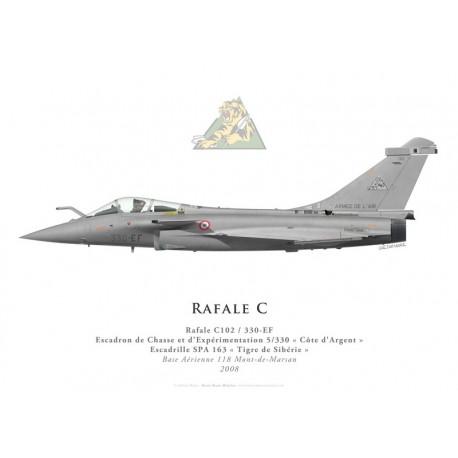 """Print du Dassault Rafale C102, ECE 5/330 """"Côte d'Argent"""", BA 118 Mont-de-Marsan, 2008"""