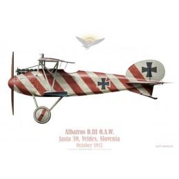 Albatros D.III, Jasta 39, Slovenia, 1917