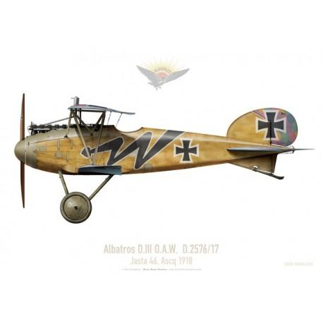 Albatros D.III, Jasta 46, France, 1918