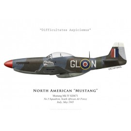 """Mustang Mk IV """"Sweetpea"""", No 5 Squadron SAAF, Italy, 1945"""