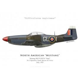 "Mustang Mk IV ""Impi"", No 5 Squadron SAAF, Italie, 1945"