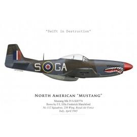 Mustang Mk IVA, No 112 Squadron, Royal Air Force, Italy, April 1945