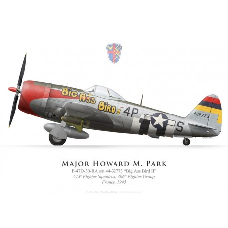 Print of the Republic P-47D Thunderbolt, Maj. Howard Park, 513th Fighter Squadron, 406th Fighter Group, France, 1945