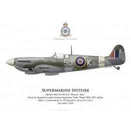 Supermarine Spitfire Mk IXc ML214, S/L John Plagis, OC No 126 Squadron, Royal Air Force, December 1944