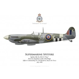 Spitfire Mk IXc, S/L John Plagis, OC No 126 Squadron, Royal Air Force, juillet 1944
