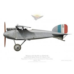 Albatros D.II AL910 captured, France, 1917