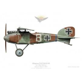 Albatros D.II, Ltn. Bohme, Jasta 5, France, mars 1917