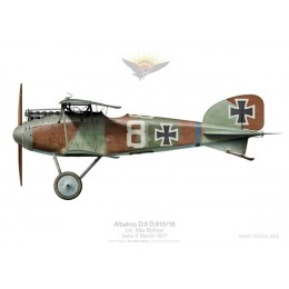 Albatros D.II, Ltn. Bohme, Jasta 5, France, March 1917