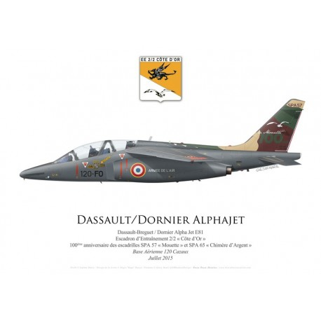 "Dassault-Dornier Alpha Jet E81, EE 2/2 ""Côte d'Or"", 100th anniversary of SPA 57 and SPA 65, July 2015"