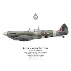 Spitfire Mk XVI, F/S Peter Attwool, No 127 Squadron, Royal Air Force, Grimbergen, Belgique, décembre 1944
