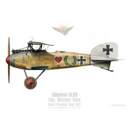 Albatros D.III, Ltn. Werner Voss, Jasta 5, Krefeld, 1917