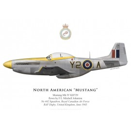 Mustang Mk IV, F/L Mitchell Johnston, No 442 Squadron, Royal Canadian Air Force, juin 1945