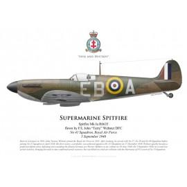 """Spitfire Mk Ia, F/L John """"Terry"""" Webster DFC, No 41 Squadron RAF, 5 septembre 1940"""