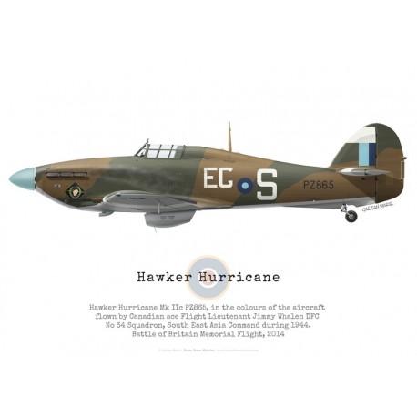 Hawker Hurricane Mk IIc PZ865, Battle of Britain Memorial Flight, 2014 -Bravo Bravo Aviation