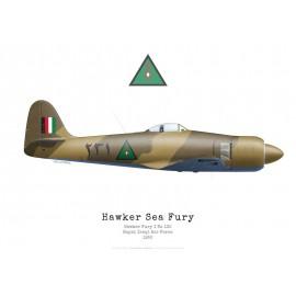 Fury I, n°132, Royal Iraqi Air Force, 1952