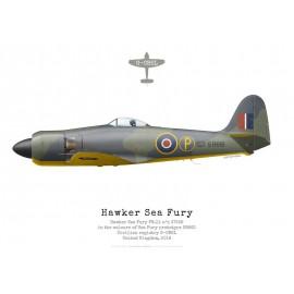 Sea Fury FB.11 G-CBEL painted as Sea Fury prototype SR661