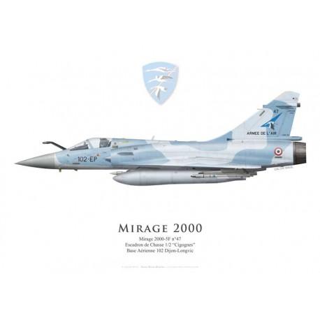 "Mirage 2000-5F n°47, EC 1/2 ""Cigognes"", BA 102 Dijon-Longvic"