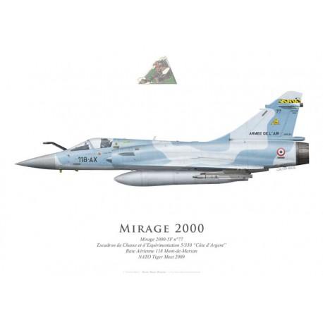 """Mirage 2000-5F, ECE 5/330 """"Côte d'Argent"""", NATO Tiger Meet 2009"""