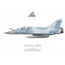 """Mirage 2000B, EC 5/330 """"Côte d'Argent"""", BA 118 Mont-de-Marsan"""