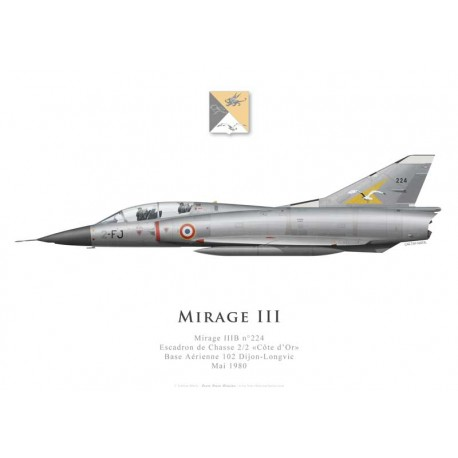 """Mirage IIIB No 224, Escadron de Chasse 2/2 """"Côte d'Or"""", French Air Force, Dijon-Longvic AFB, May 1980"""