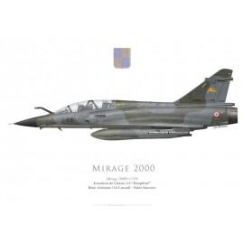 """Mirage 2000N, EC 1/4 """"Dauphiné"""", BA 116 Luxeuil-Saint-Sauveur"""